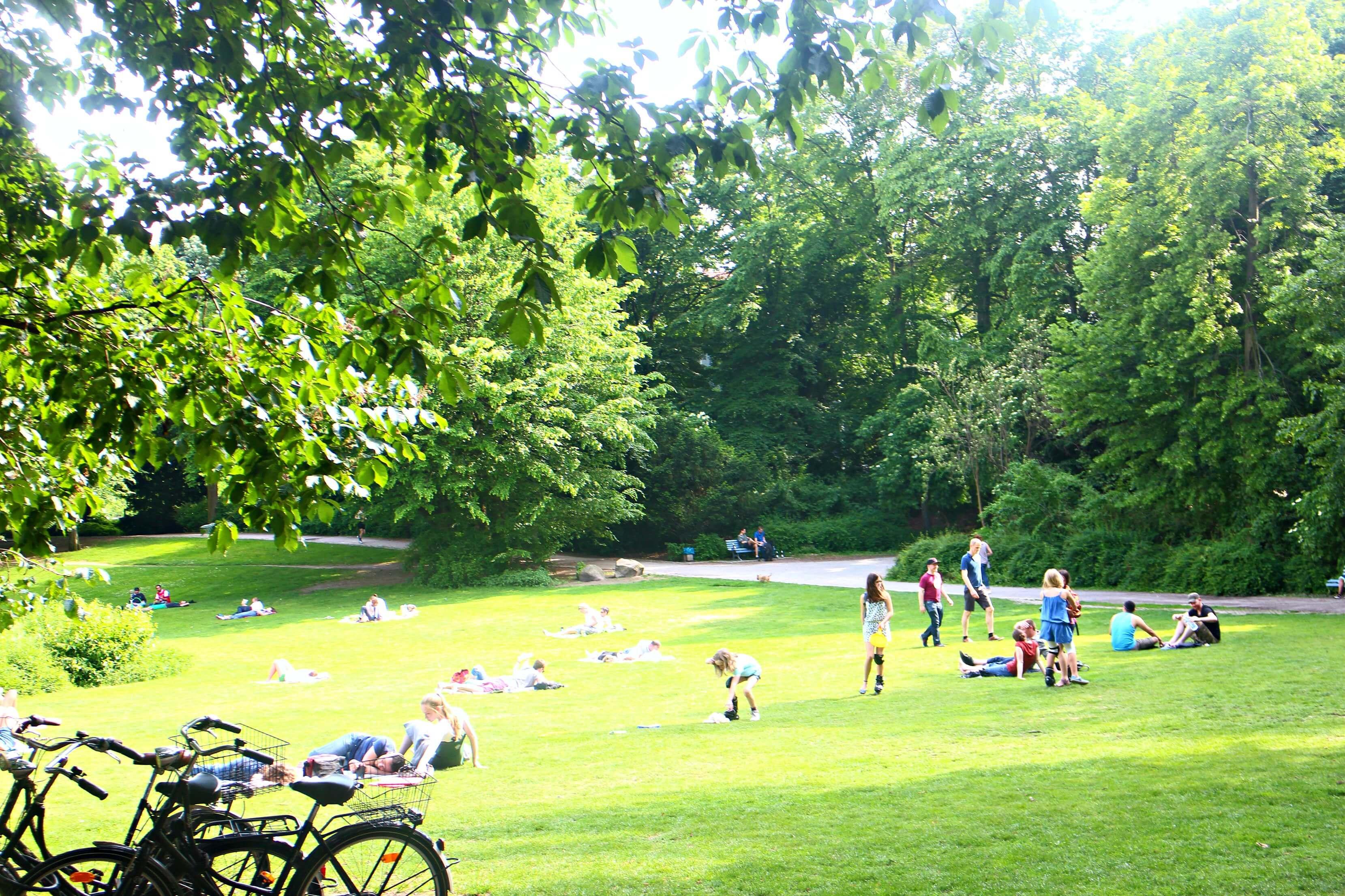 park-volkspark-wilmersdorf-berlijn