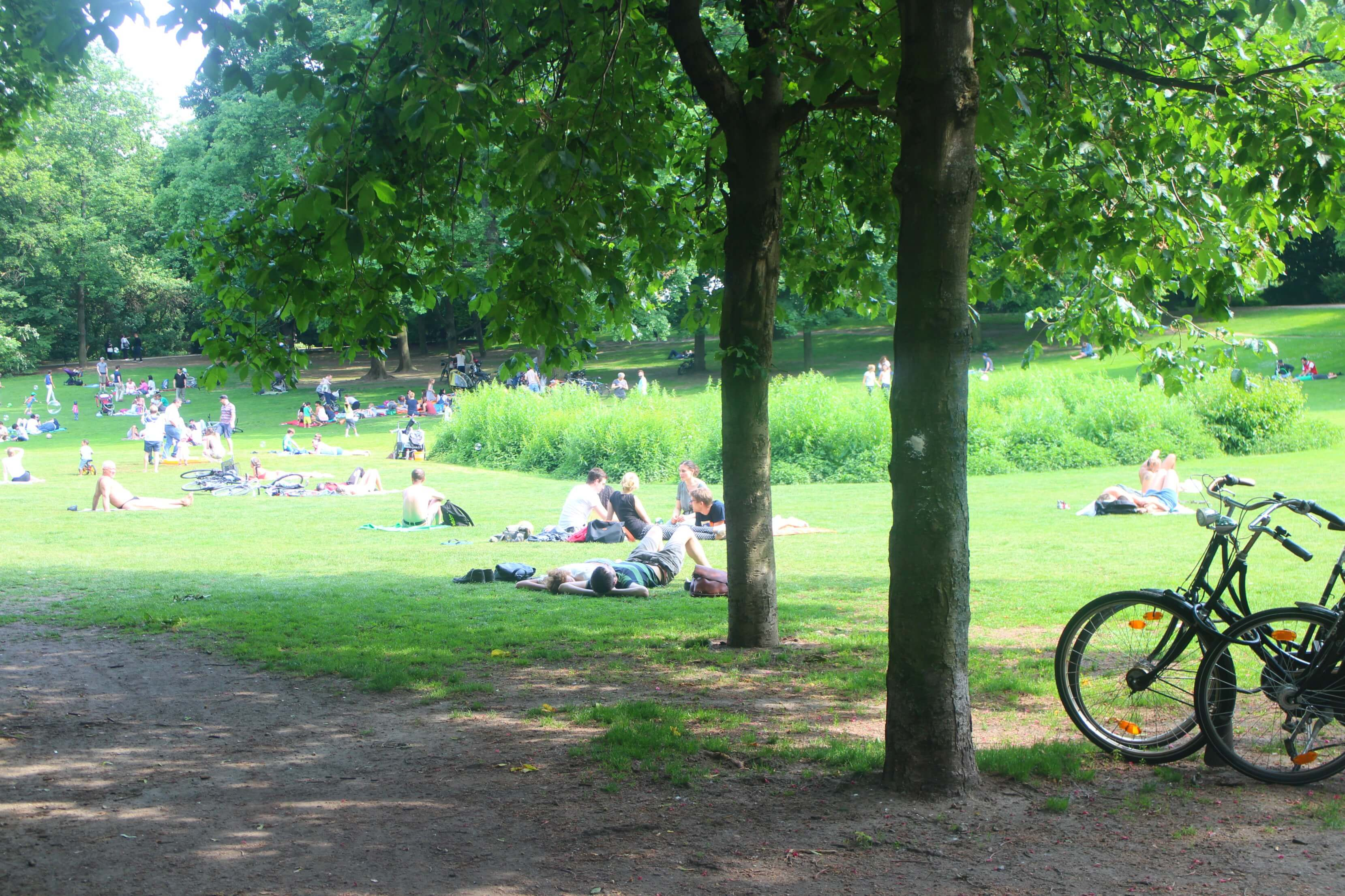 volkspark-wilmersdorf-berlijn