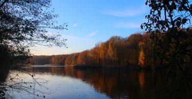 Foto's van herfst in Berlijn