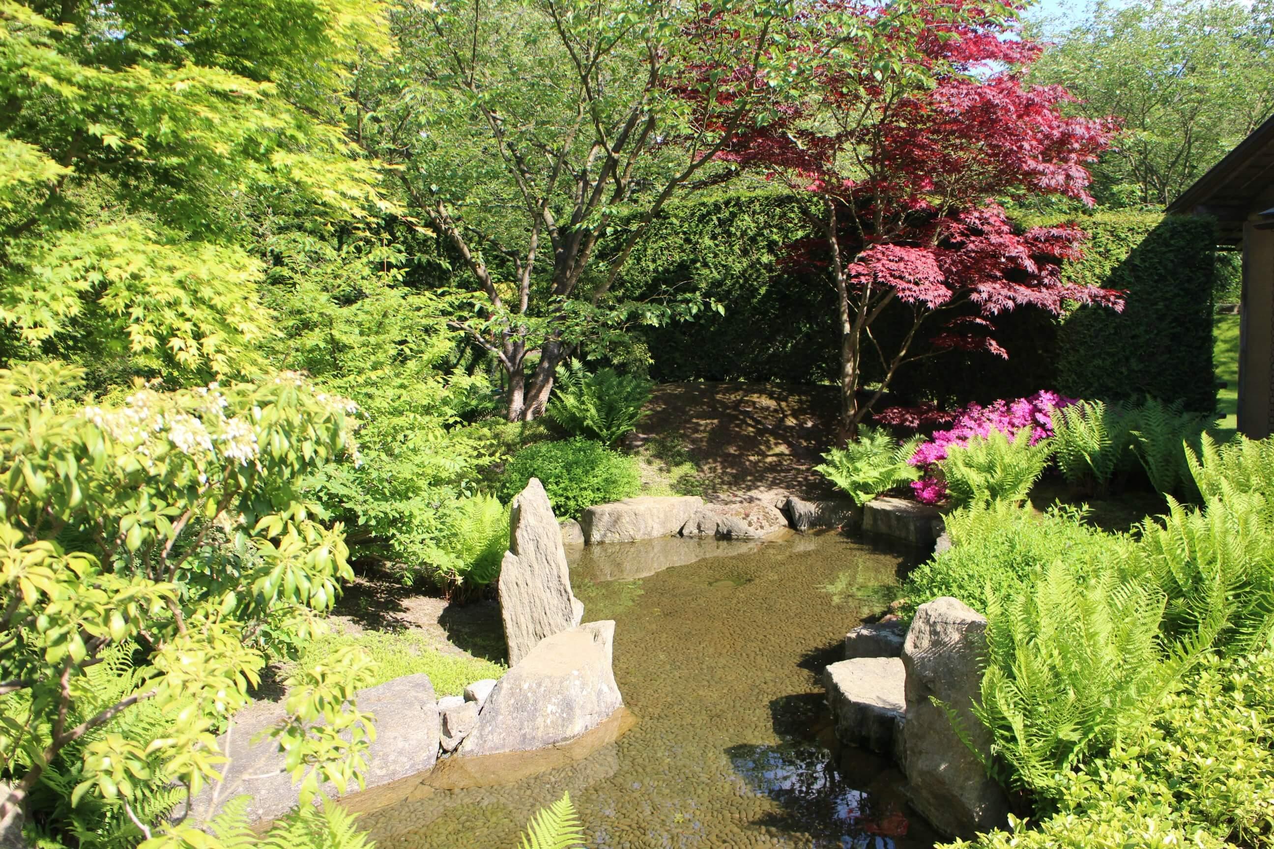 Japanse tuin Berlijn