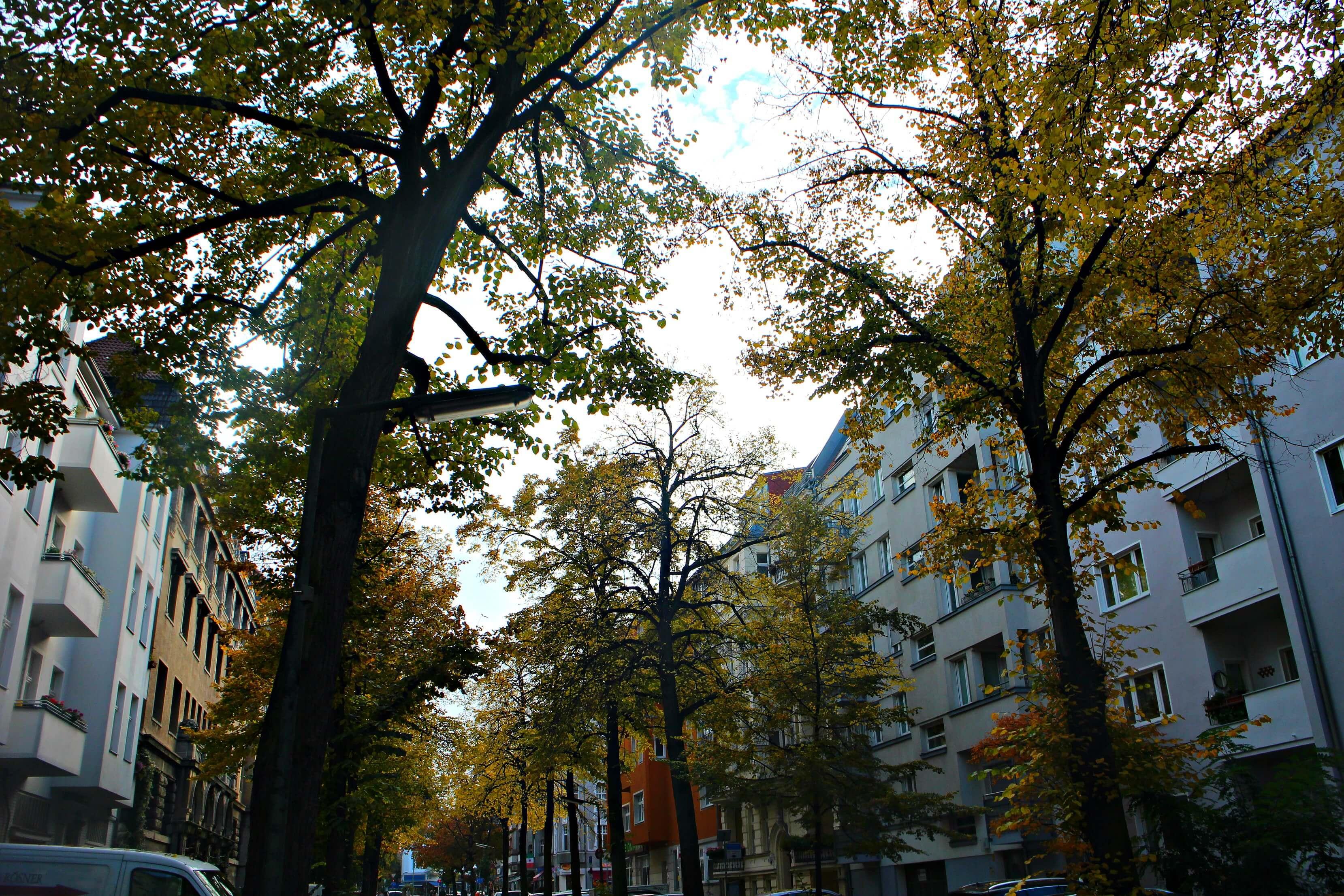 Herfst in Friedenau Berlijn